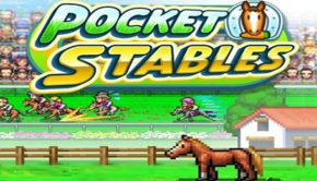 pocket-stables-android-u-review