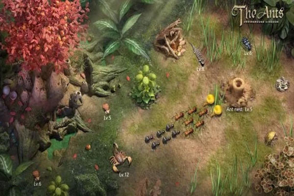 View of outside the ant hill where players can attack each other